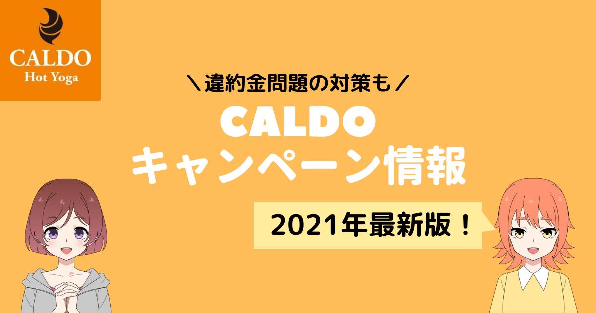 カルド キャンペーン